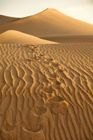 Lost in a desert - Elveszve a sivatagban